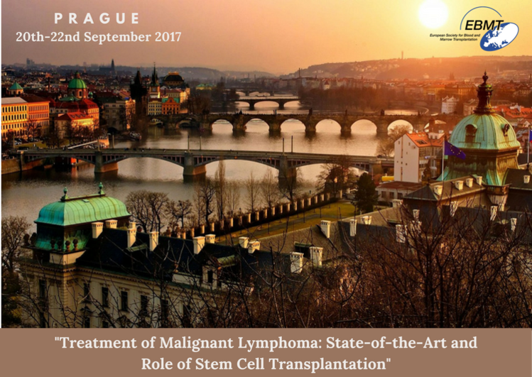 13th Educational Course of the LWP Treatment of Malignant Lymphoma: State-of-the-Art and Role of Stem Cell Transplantation